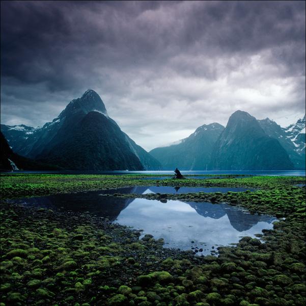 Новая Зеландия 2011